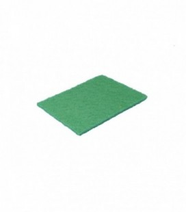 Spugna Abrasiva Verde Riccio